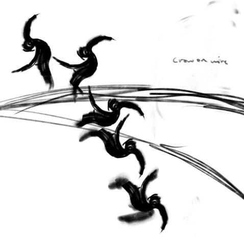 crowonwire.jpg