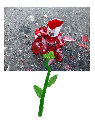 Coca flore