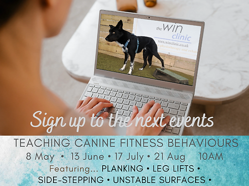 Pawspiration for teaching canine exercise - Event #3