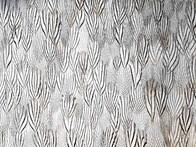 Décor-plume-faisan-argenté-par-plumavera