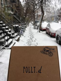 Première neige - Montréal