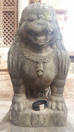 Groaaaar - Nepal