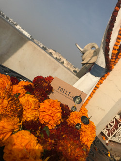 Bo Rani_Udaïpur_inde
