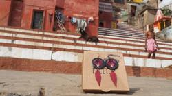 Bo Varanasi_varanasi-Inde