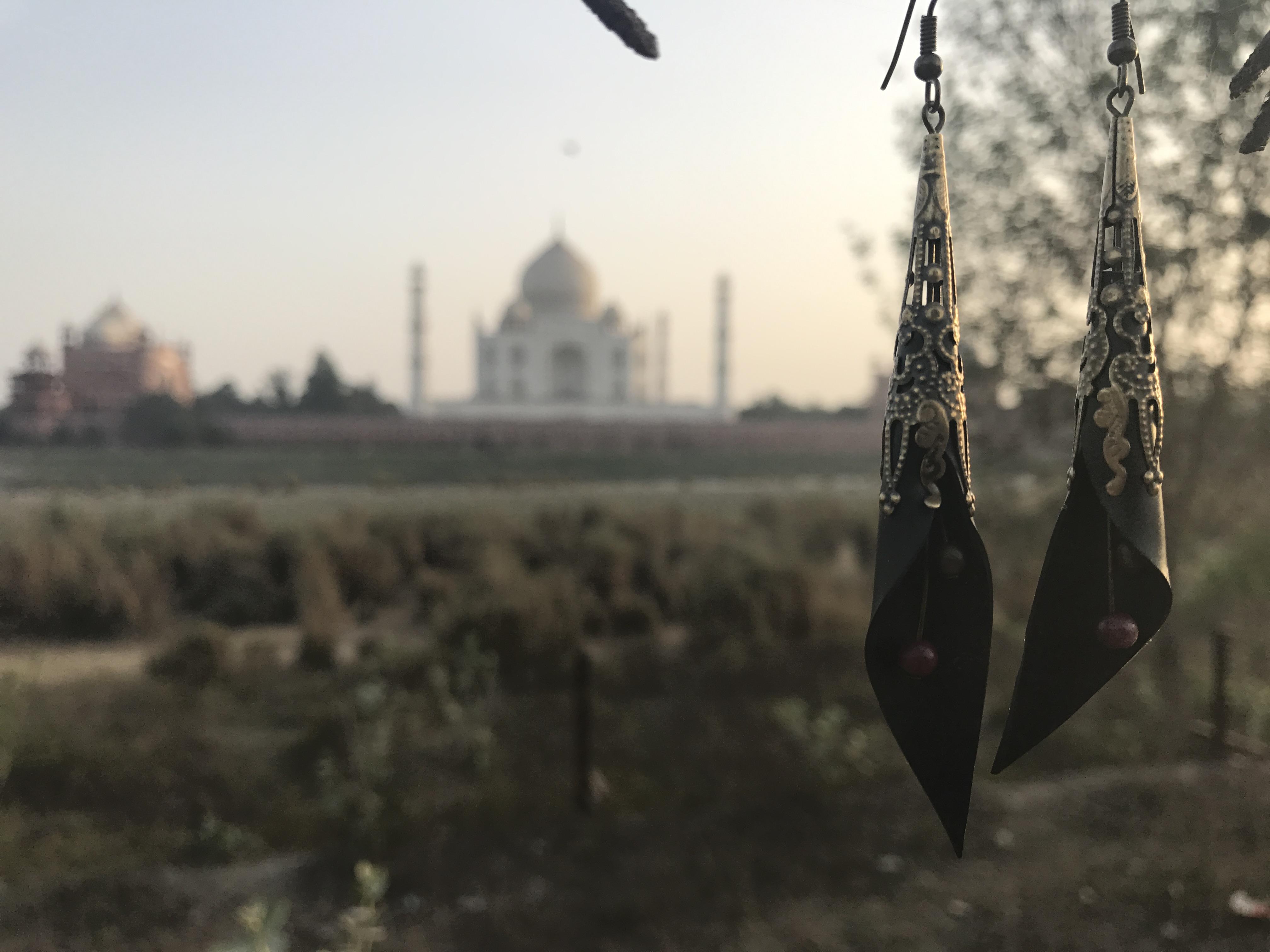Taj Mahal et boucles Agra_Agra_Inde
