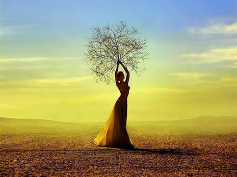 Danse avec la Terre
