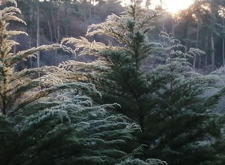 L'hiver s'installe