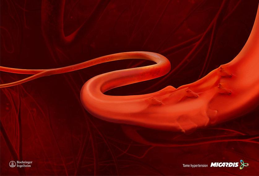 Micardis hypertesion.jpg
