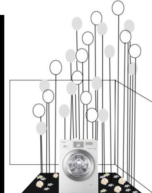 Inspiré de Charles Petillon pour Ecobubble machine à laver