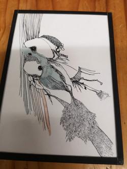 Illustration par Sidonie Rocher