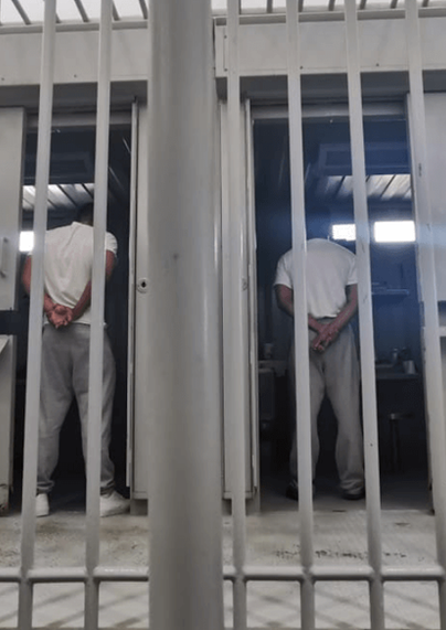 Dentro de las celdas