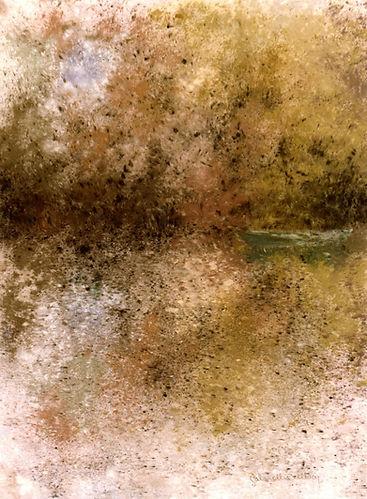 Gabrielle Bellocq  Rêverie sur l'étang S