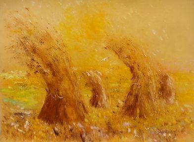 Gabrielle Bellocq 1998 Moissons. 65X50.