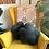 Thumbnail: Flower Pillow