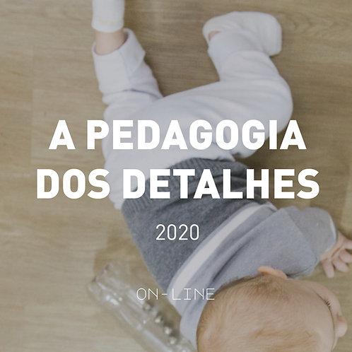 A Pedagogia dos Detalhes - Diálogos sobre a Abordagem Pikler -INICIANTE - 2º sem