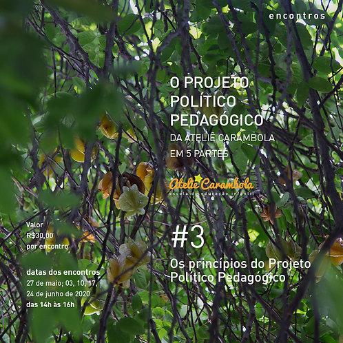 encontros: O Projeto Político Pedagógico da Ateliê Carambola #3