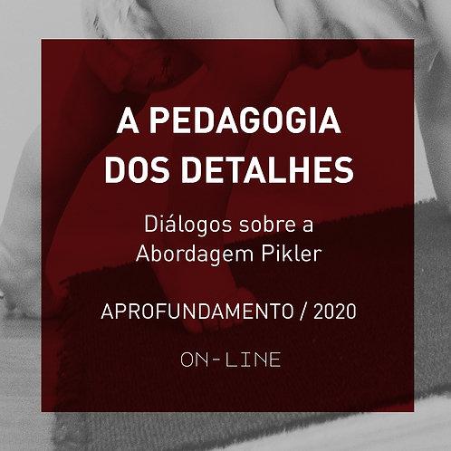 A Pedagogia dos Detalhes - Diálogos sobre a Abordagem Pikler - APROF - ON-LINE