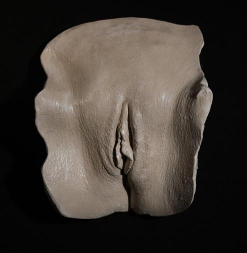 VulvaVariety