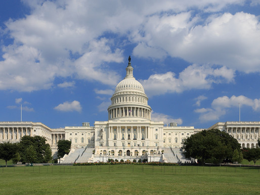 What Can We Learn from the Riot in the Capitol?