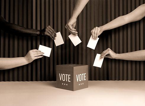 Voters_edited_edited.jpg