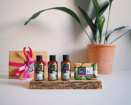 The Travel Gift Set