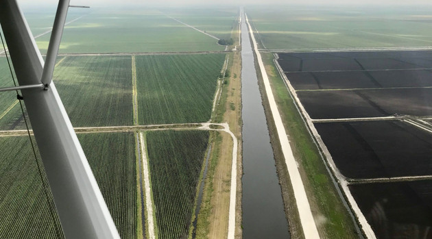 Sugar Subsidies and Sugarcane in the Everglades Agricultural Area