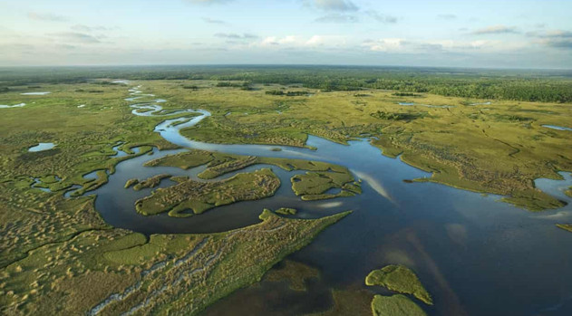Florida Can't Wait: Invest in the Everglades, and Bring Relief to the State