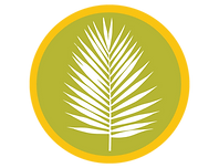 palm frawn.png