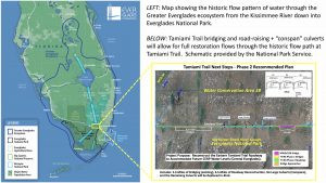 Everglades Foundation Applauds $60 Million Grant to Restore Natural Flow of Water Beneath Tamiami Tr