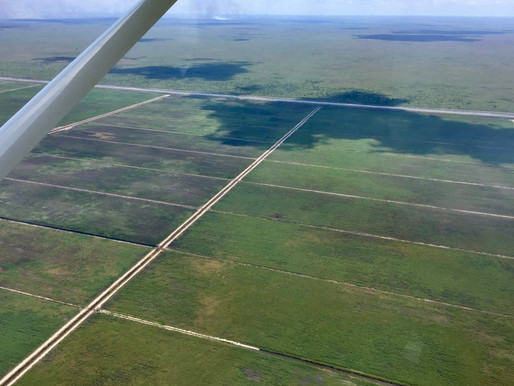 "Everglades Reservoir Jeopardized by ""Inexcusable Bureaucracy"""