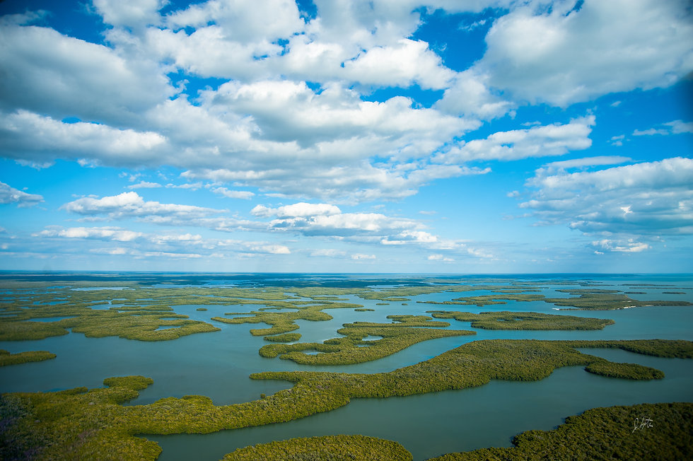 Aerial view of the Ten Thousand Islands in Everglades National Park.jpg