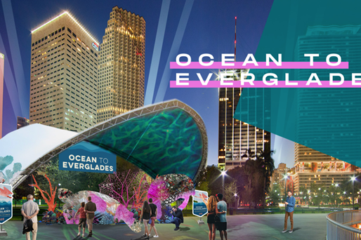 Miami Super Bowl Host Committee Launches Super Bowl LIV Environmental Initiative Ocean to Everglades