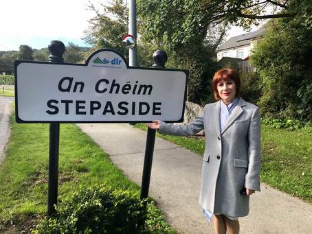 Fernhill Park and Gardens to receive €500,000