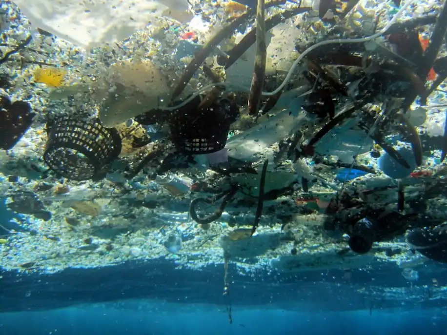 Earth and its Plastic Pollutants Problem By Mianzi