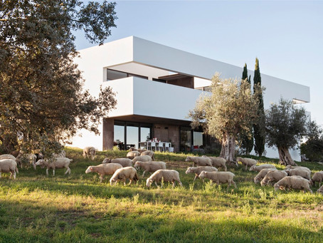 Villa Extramuros – Contemporary Architecture in Alentejo