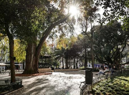 Campo de Ourique - An 'off the beaten path' neighborhood