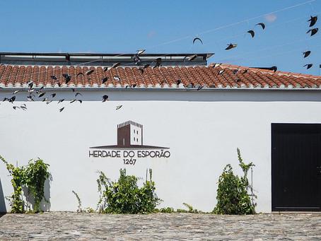 Herdade do Esporão – Wine, Olive Oil & Restaurant