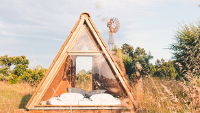 CO Project Farm: A One-of-a-Kind Brain Spa