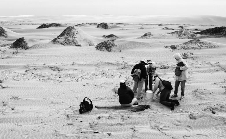 """Arqueólogos recolectando artefactos del Galeón de Manila en las playas de Guerrero Negro, Baja California Sur. Proyecto """"El Galeón de Manila"""". Foto por Rodrigo Del Río SAS/INAH"""