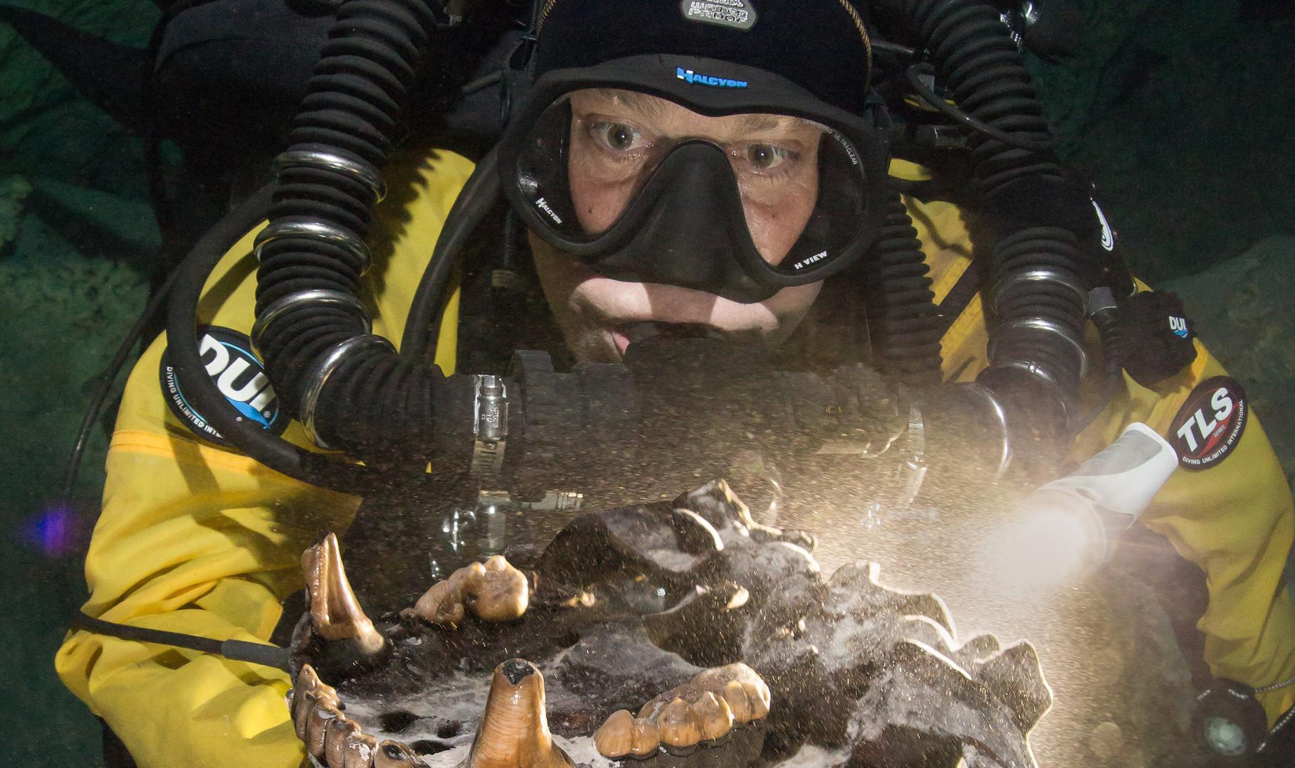 """Buzo recolectando restos de fauna pleistocénica en el sitio arqueológico Hoyo Negro. Proyecto """"Hoyo Negro"""". Foto por Proyecto Hoyo negro SAS/INAH"""