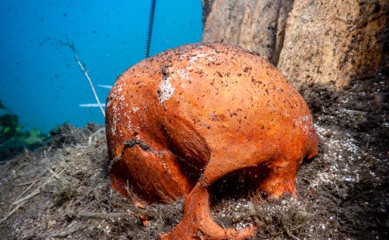"""Craneo femenino hallado en el fondo del Manantial Media Luna en San Luis Potosí. Proyecto """"Arqueológico Media Luna"""". Foto por Octavio González SAS/INAH"""