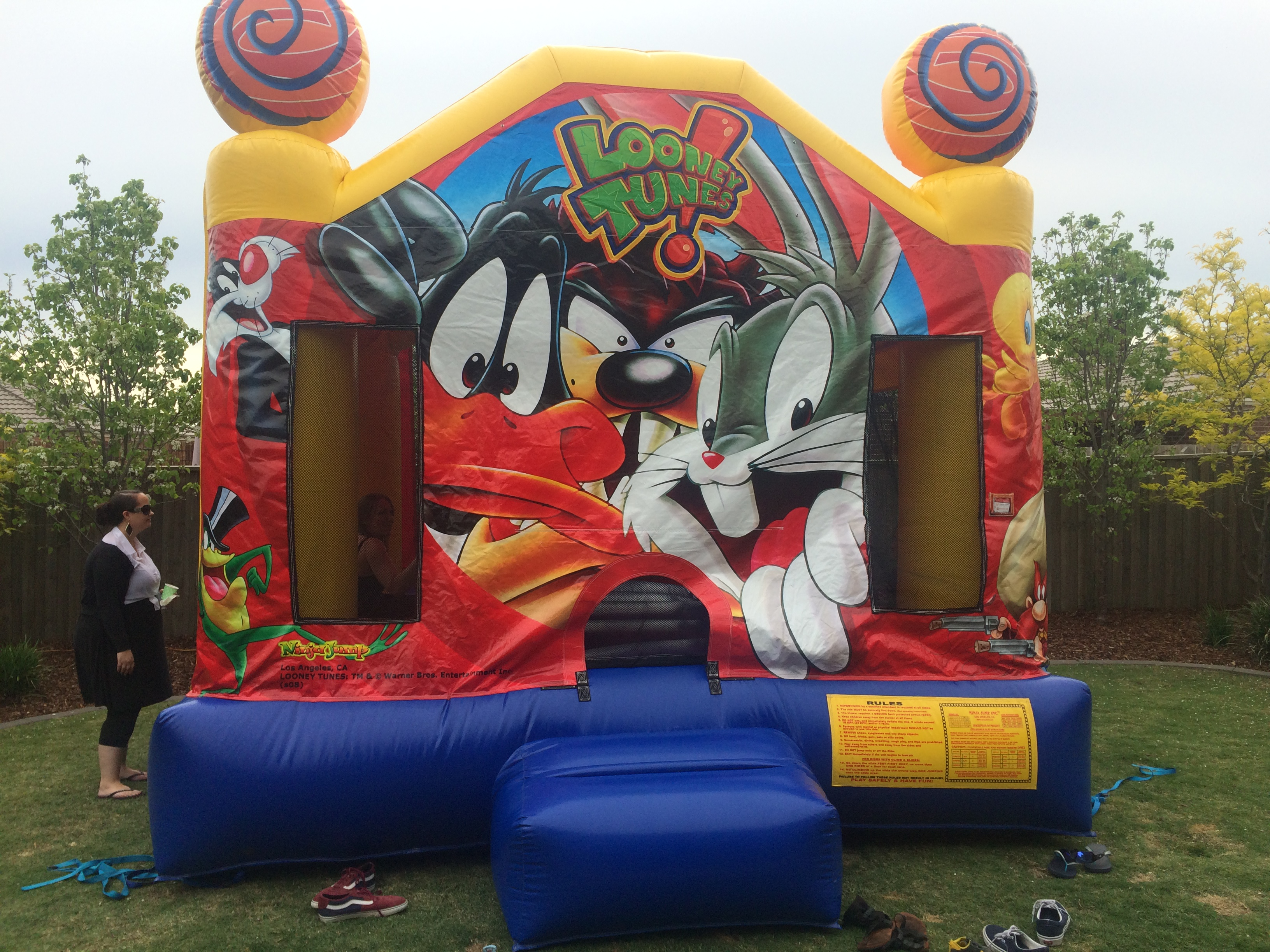 Looney Tunes Jumping Castle Hire