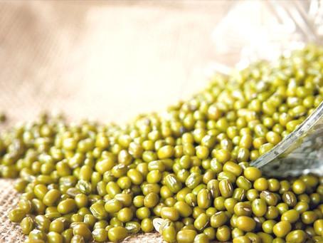 Food as Medicine: Mung Beans