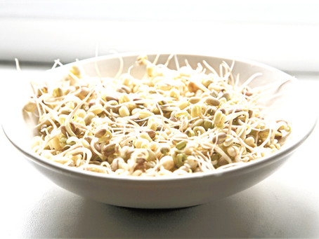 Food as Medicine: Mung Bean Sprouts