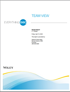 E DiSC Team View.PNG
