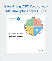 E DiSC Wplace Style Guide.PNG