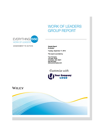 Everything DiSC Work of Leaders Group Re