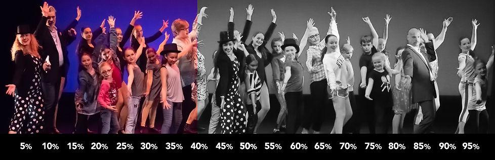 Fundraiser-Graphic-40%.jpg