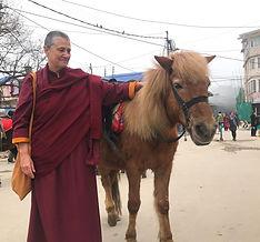 Leks with horse Darjeeling good.jpg