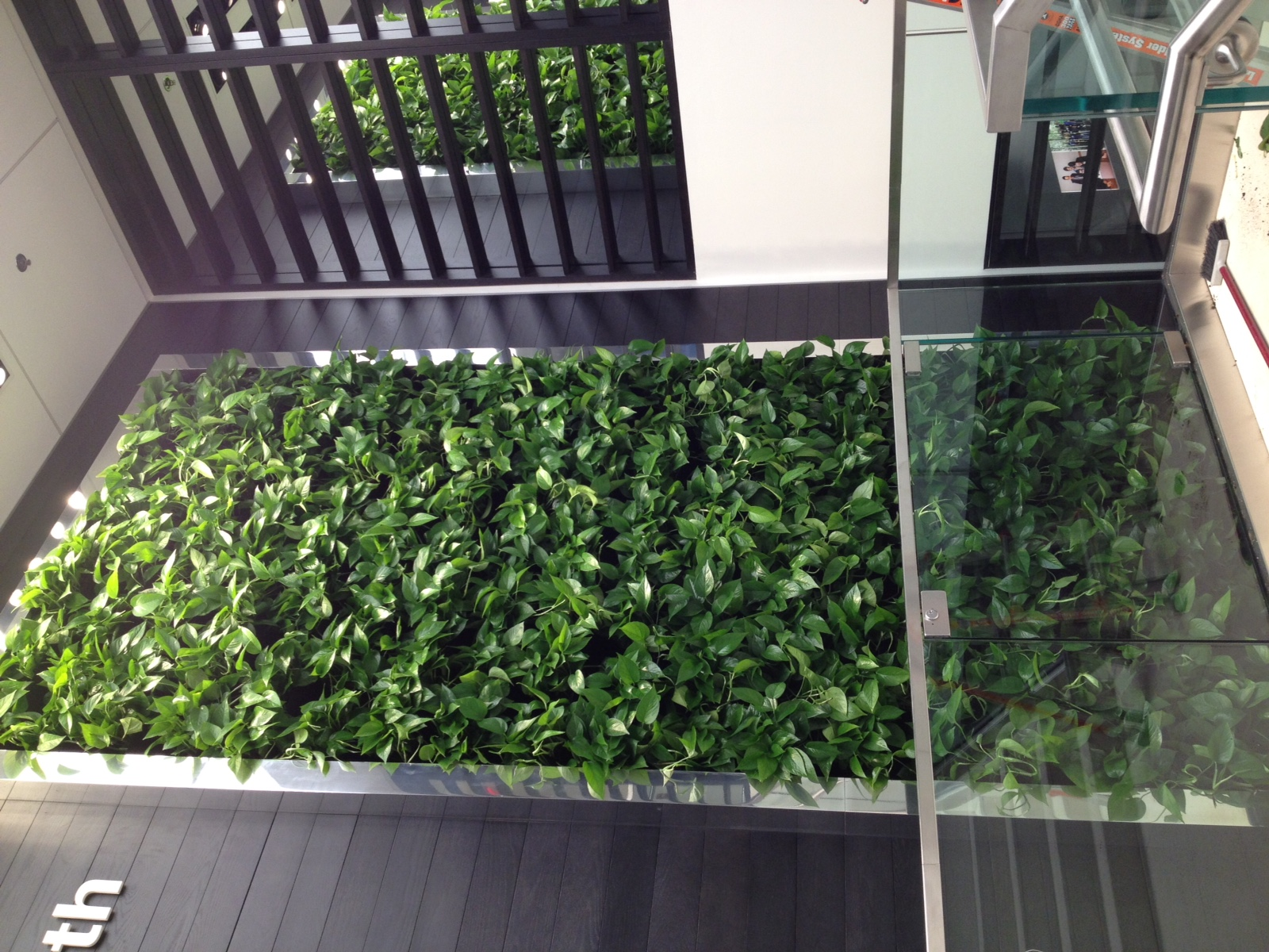 Living Wall Stair Display